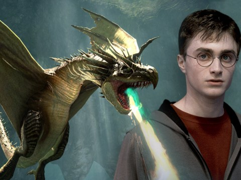 New fan theory suggests Harry Potter can talk to dragons