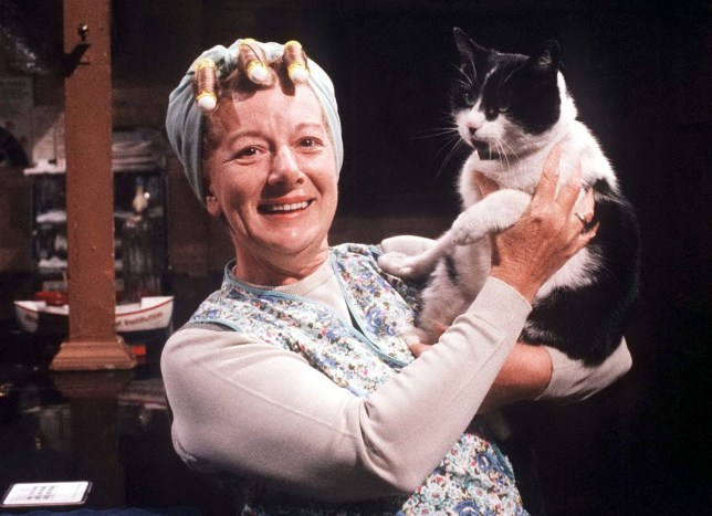No Merchandising. Editorial Use Only Minimum use fee GBP 50 Mandatory Credit: Photo by ITV/REX/Shutterstock (679796hb) 'Coronation Street' TV - 1986 - Hilda Ogden [Jean Alexander] ITV ARCHIVE