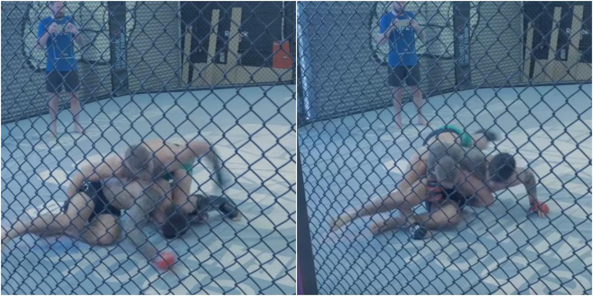 Video: Conor McGregor focusing on grappling and wrestling skills ahead of Eddie Alvarez UFC 205 fight