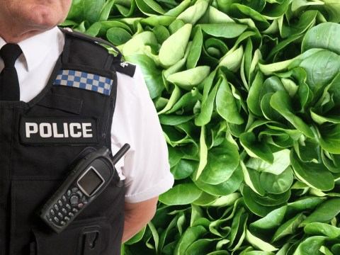 Man calls police on his wife for raising their kids vegetarian