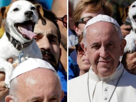 Pope photobombed at Vatican by grinning dog