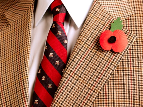 Should I wear a poppy? Arguments for and against supporting the Remembrance Sunday poppy appeal