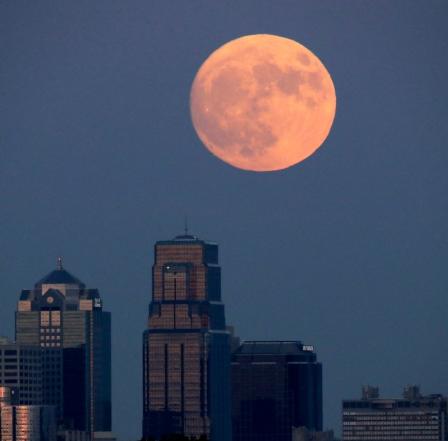The moon rises beyond downtown buildings Sunday, Nov. 13, 2016, in Kansas City, Mo. Monday's supermoon will be extra super ó it will be the closest the moon comes to us in almost 69 years. And it won't happen again for another 18 years. (AP Photo/Charlie Riedel)