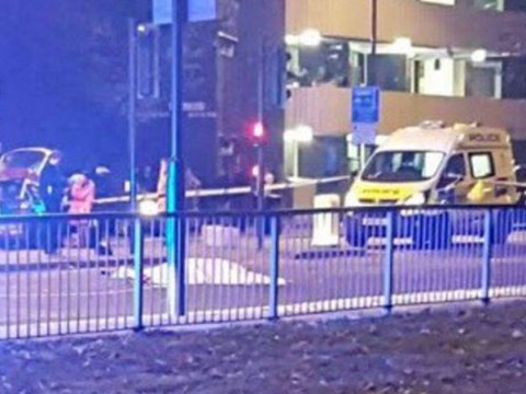 Woman killed after being hit by Range Rover in London