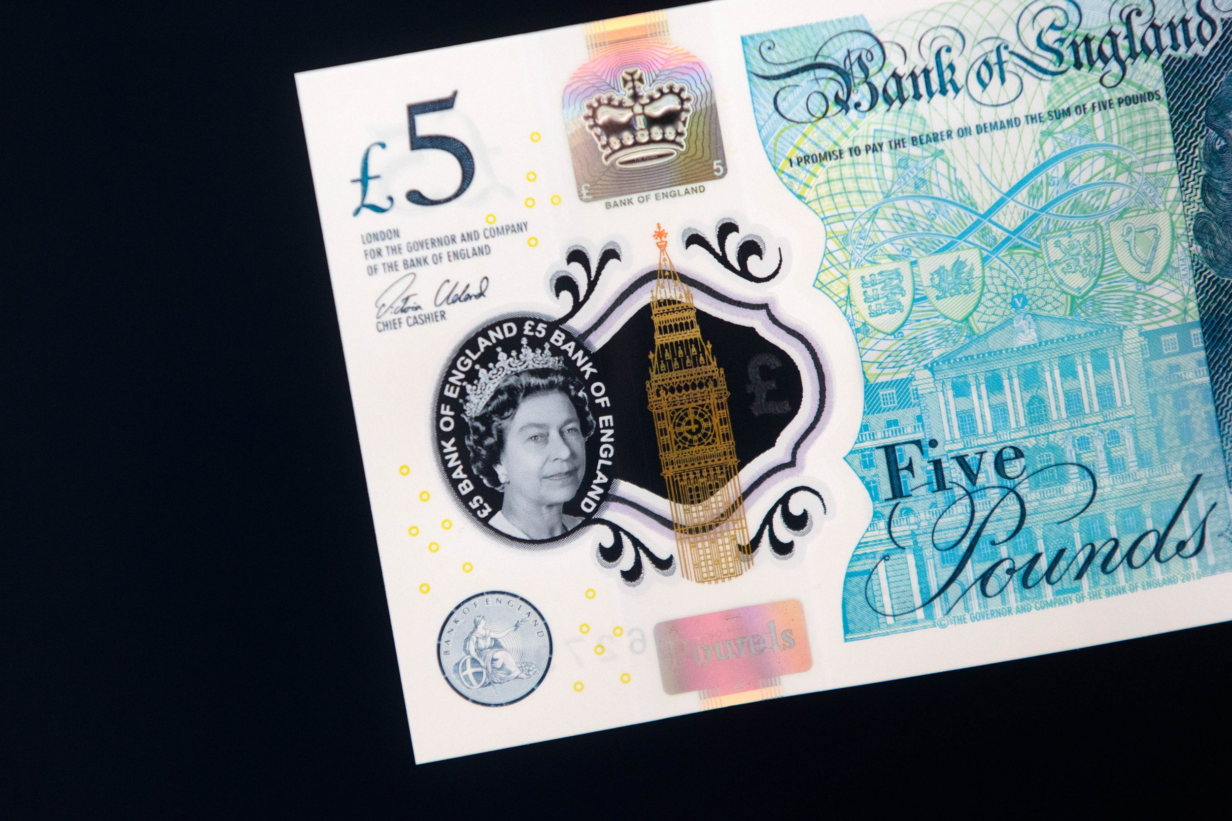 New £5 note inventor says Hindus, vegans and veggies are all 'stupid'