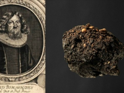 Bishop had an 'exotic diet' – according to his 300-year-old lump of stale poo