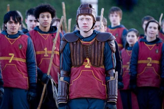 Quidditch Premier League Picture: Warner Bros.