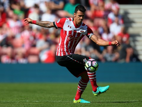 Steven Davis: Southampton aren't worried about Jose Fonte joining Manchester United