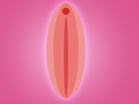 The rise of labiaplasty is yet more proof that we really need to change the way we talk about vaginas