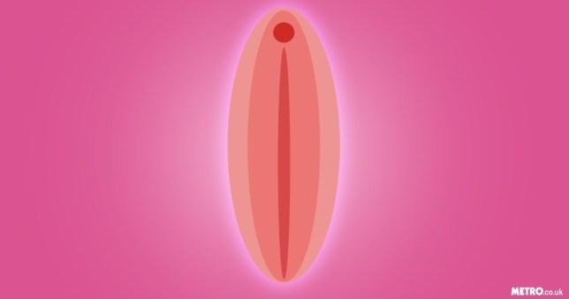 vagina.png