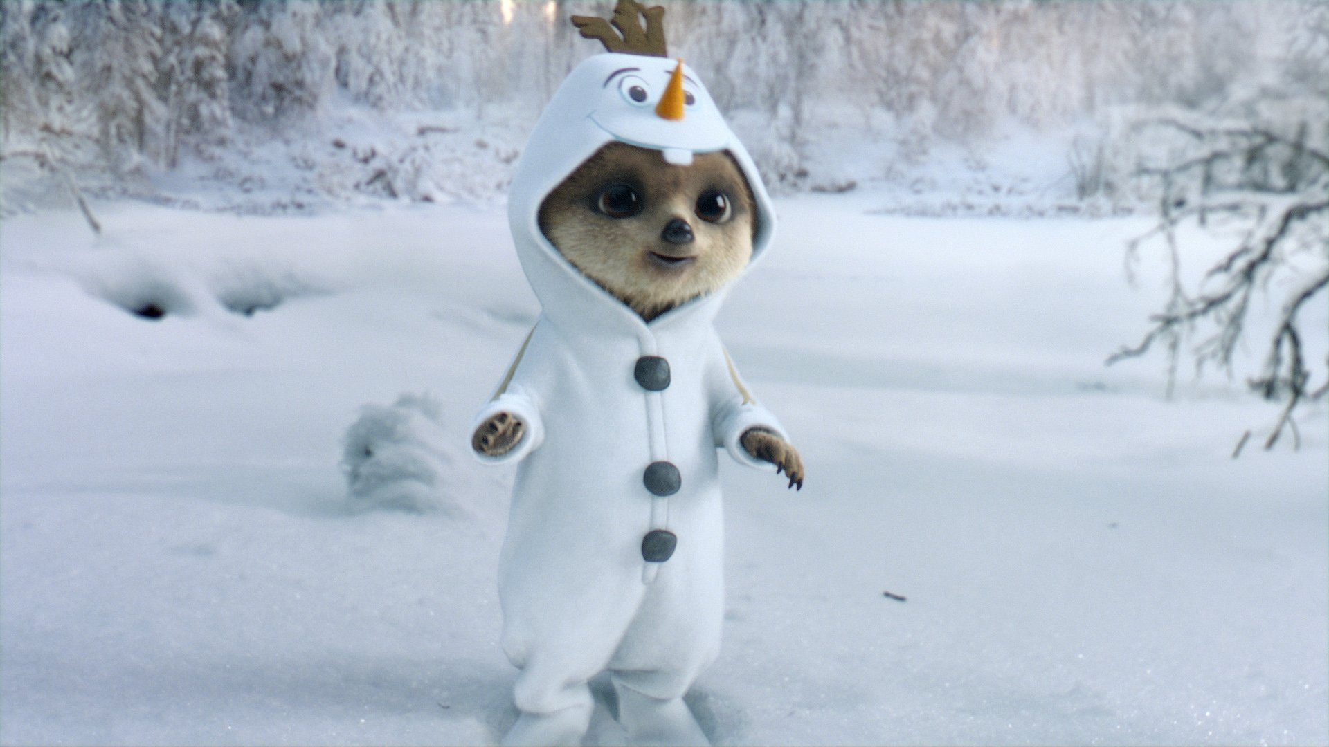 Undated handout photo issued by comparethemarket.com of a still from their new Disney Frozen themed Christmas advert staring meerpup favourite Oleg and new friend Ayana. PRESS ASSOCIATION Photo. Issue date: Thursday December 22, 2016. The ad airs for the first time on Christmas Day on ITV from 8pm. See PA story SHOWBIZ Meerkats. Photo credit should read: comparethemarket.com/PA Wire NOTE TO EDITORS: This handout photo may only be used in for editorial reporting purposes for the contemporaneous illustration of events, things or the people in the image or facts mentioned in the caption. Reuse of the picture may require further permission from the copyright holder.