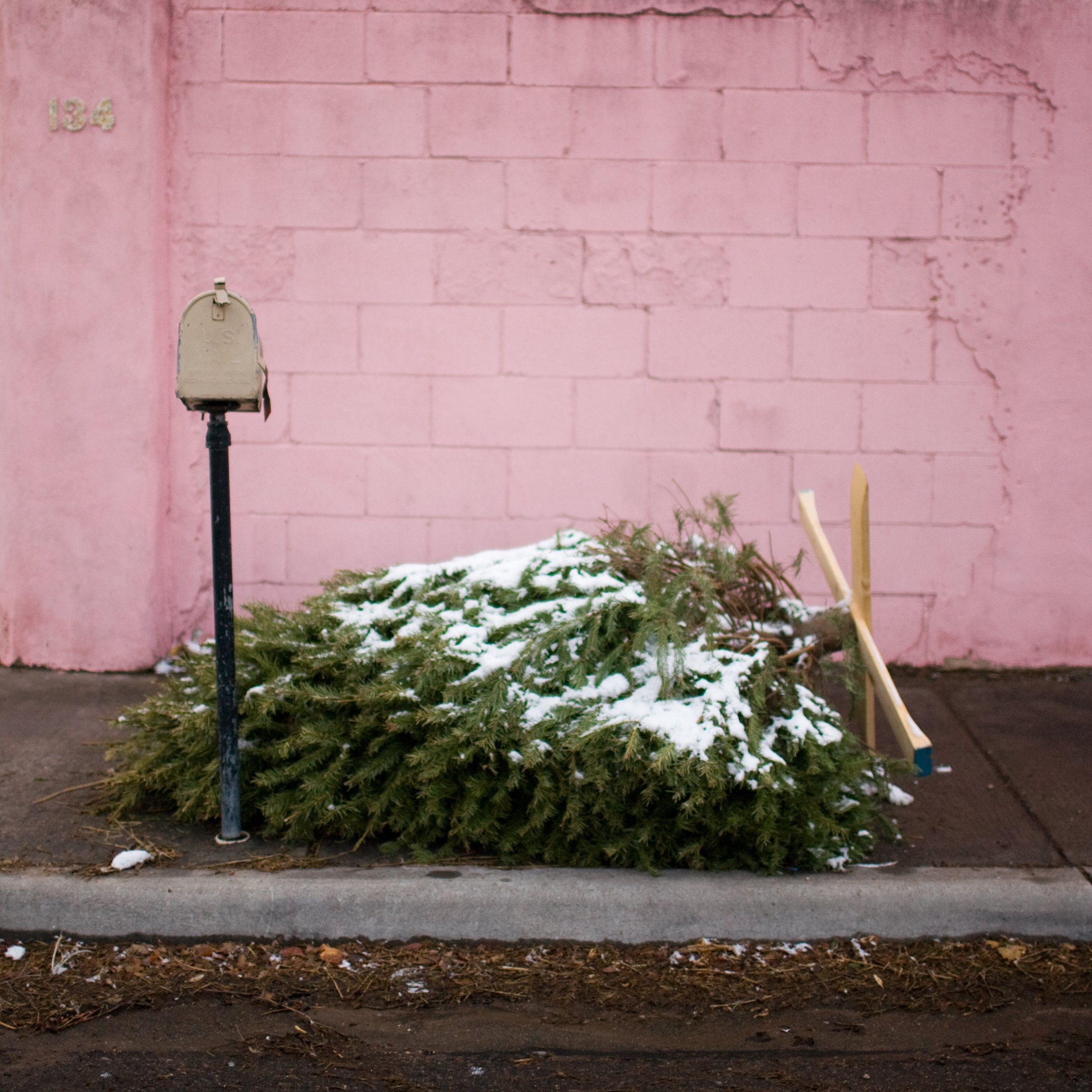 An old abandoned Christmas tree covered in snow on the side of the road next to a mailbox and a pink wall