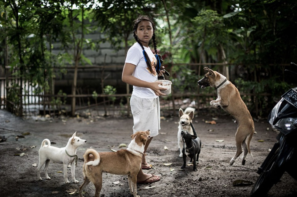 The Balinese girl and her 29 rescued street dogs Picture: Agung Parameswara