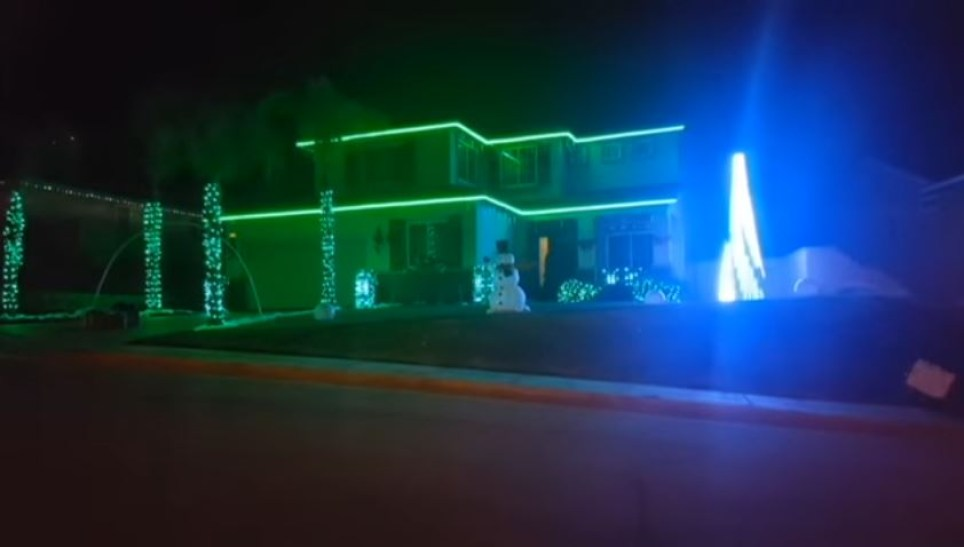 Christmas Lights Tribute to Carrie Fisher (Picture: YouTube/blisstonia)