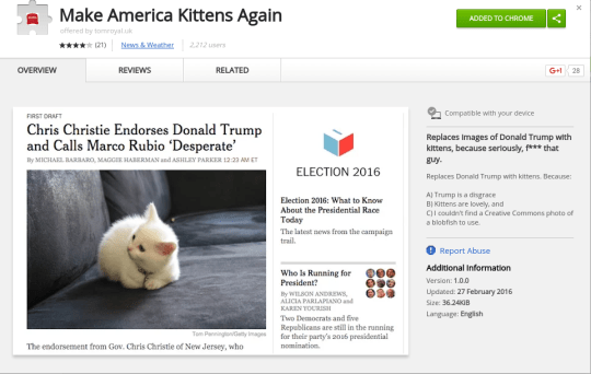 Make America Kittens Again Google Chrome extension replaces