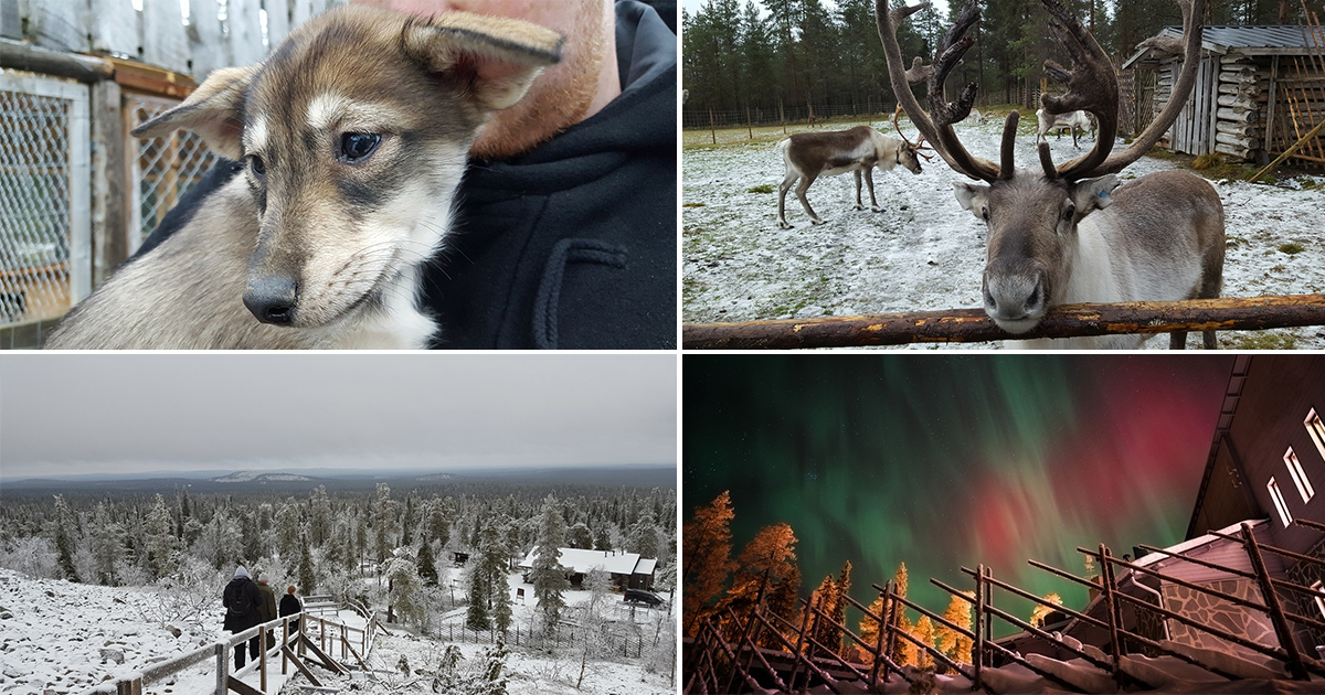 Lapland is a magical place to visit all year round and we've got the proof