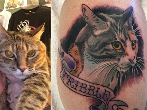 This woman had her cat's ashes mixed with ink for an extra sentimental tattoo