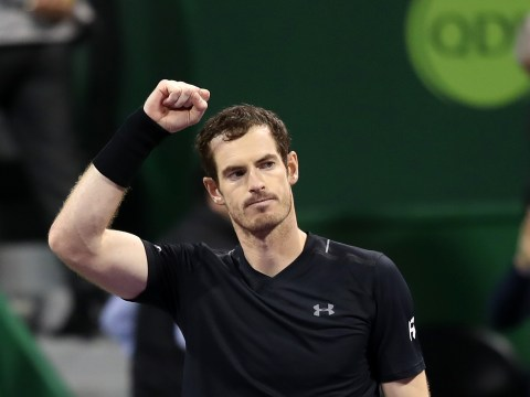 Andy Murray sets up Qatar Open final clash vs Novak Djokovic after win over Tomas Berdych