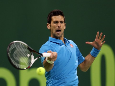 Novak Djokovic beats Radek Stepanek to set up Qatar Open semi-final with Fernando Verdasco