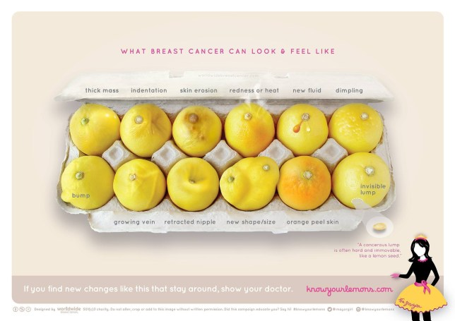 Signs of breast cancer explained, using lemons Credit: Worldwide Breast Cancer
