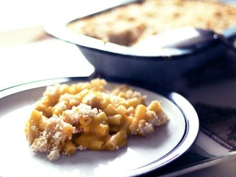 Why not make this vegan macaroni cheese recipe today?