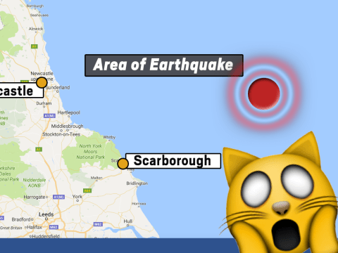 Funniest reactions to the earthquake off the coast of Yorkshire