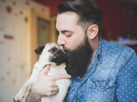 15 reasons why dog people are way hotter than cat people