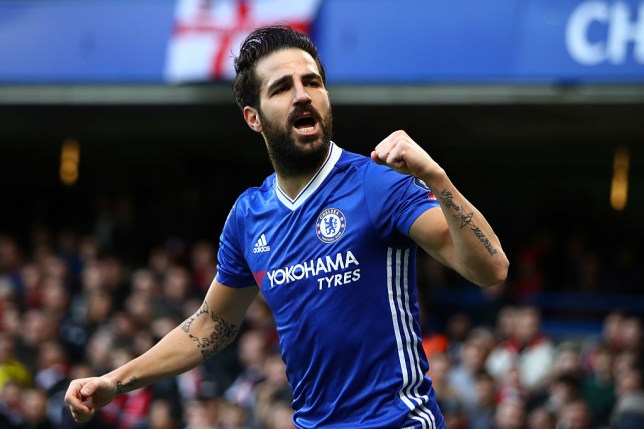 LONDON, ENGLAND - JANUARY 28: Cesc Fabregas of Chelsea celebrates after Willian (not pictured) scores his sides first goal during the Emirates FA Cup Fourth Round match between Chelsea and Brentford at Stamford Bridge on January 28, 2017 in London, England. (Photo by Clive Mason/Getty Images)