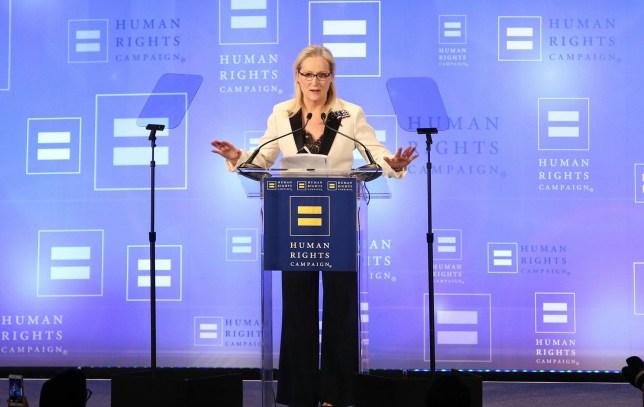 Mandatory Credit: Photo by Abel Fermin/REX/Shutterstock (8344508ab) Meryl Streep Human Rights Campaign gala dinner, Show, New York, USA - 11 Feb 2017