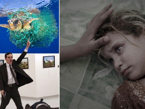 Most powerful images showcased at World Press Photo 2017 awards
