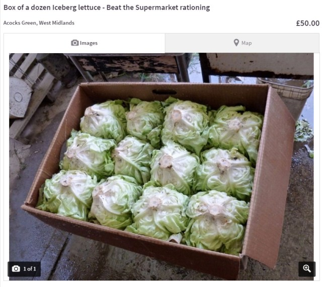 (Picture: Dave/Gumtree)