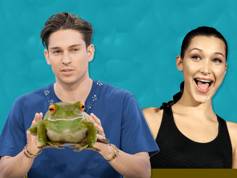 Celebs Go Dating's Joey Essex wants to 'put a frog on Bella Hadid's face'