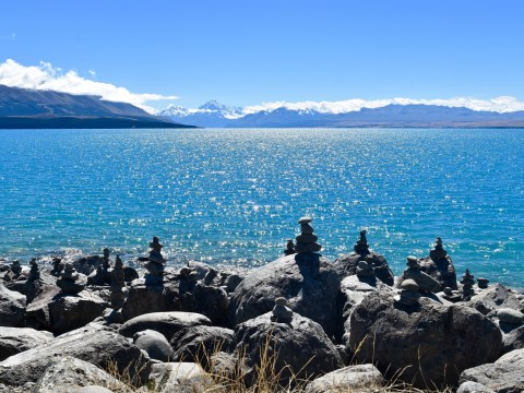 12 incredible things about New Zealand that will make you want to visit it right now