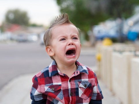 23 reasons your toddler is throwing a tantrum right now