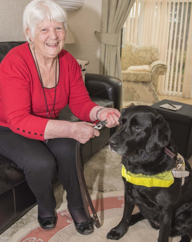 Undated handout photo issued by City of Wolverhampton Council of Rita Nicholls, 71, and her guide dog Charlie, as a taxi driver has been fined for leaving her stranded after refusing to pick her up. PRESS ASSOCIATION Photo. Issue date: Friday March 3, 2017. Samim Yakubi was worried the dog would urinate or leave hairs in his car after arriving to pick them up in Wolverhampton in October 4 last year. See PA story POLICE Taxi. Photo credit should read: City of Wolverhampton Council/PA Wire NOTE TO EDITORS: This handout photo may only be used in for editorial reporting purposes for the contemporaneous illustration of events, things or the people in the image or facts mentioned in the caption. Reuse of the picture may require further permission from the copyright holder.