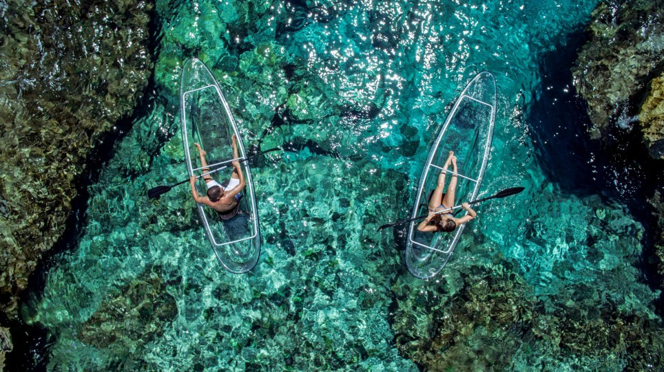 Pic from Caters News - (Pictured: on the waters of Bimini in the Bahamas.) - These incredible see through kayaks give paddlers a unique view of the extraordinary marine life beneath them. The transparent boats, created by the Crystal Kayak Company based in Florida, are a perfectly clear canoe-kayak hybrid that make rowers look as though theyre floating on water. Paddlers are given an incredible view of the sea life beneath them as they travel thanks to the clear polycarbonate panels and one of the futuristic looking vessels could be yours for just 1499 usd. The durable yet lightweight construction means the boat can even be used in choppy waters and its removable frame, seats and inflatable chambers allow for easy stacking, storage and transportation. Each Crystal Kayak includes two paddles, two seats and two flotation pouches.