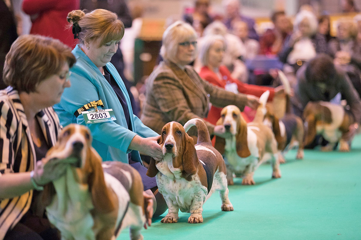 When is the Crufts Dog Show 2018?