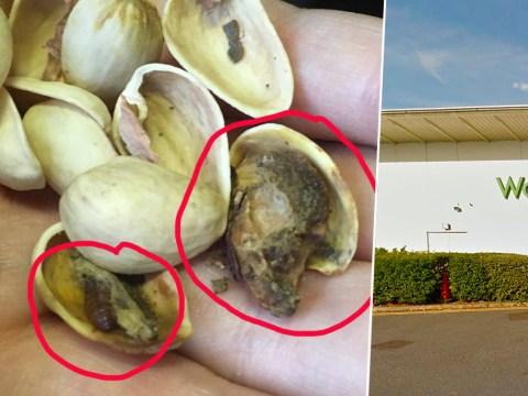 Woman finds huge bugs festering inside Waitrose nuts