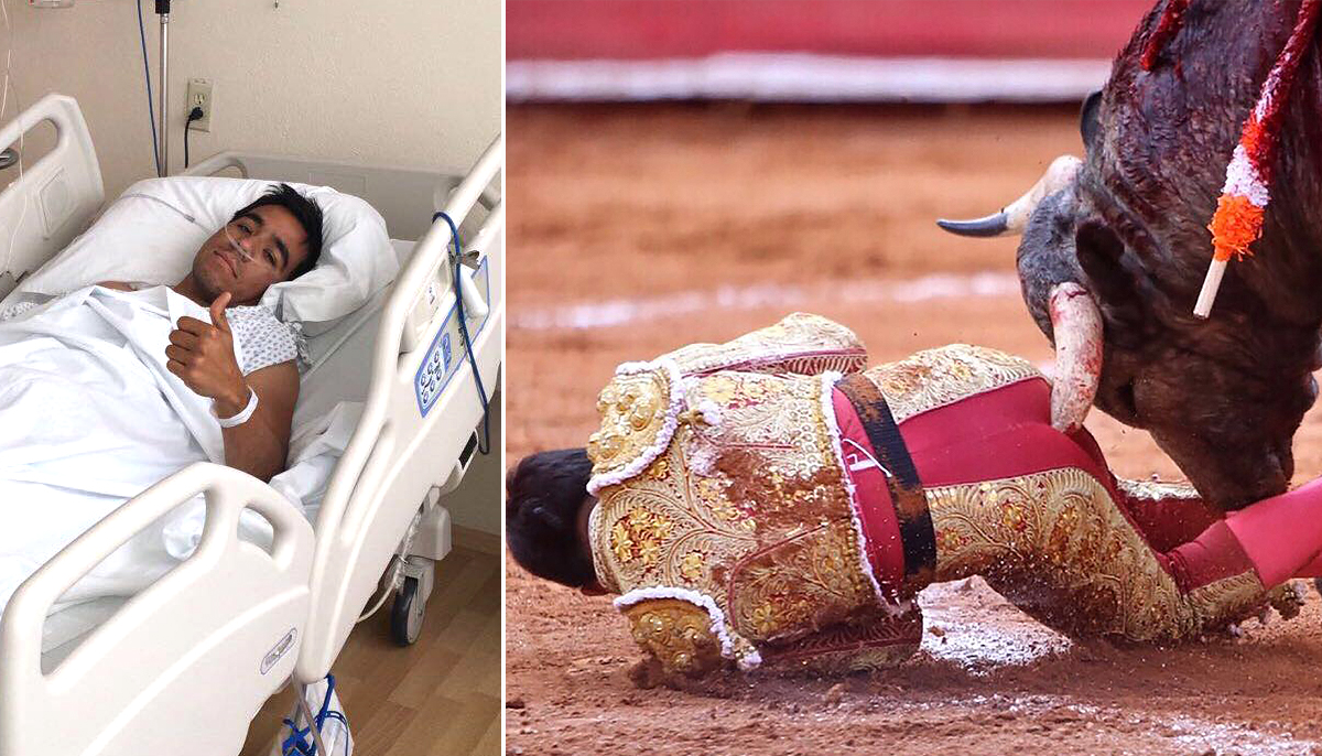 Matador whose anus was 'completely destroyed' by bull is doing okay