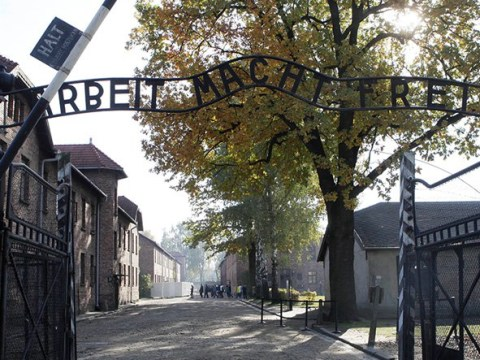 People kill sheep, strip naked and chain themselves together at Auschwitz gates