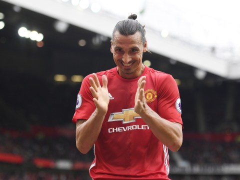 Manchester United striker Zlatan Ibrahimovic's knees wanted for medical research