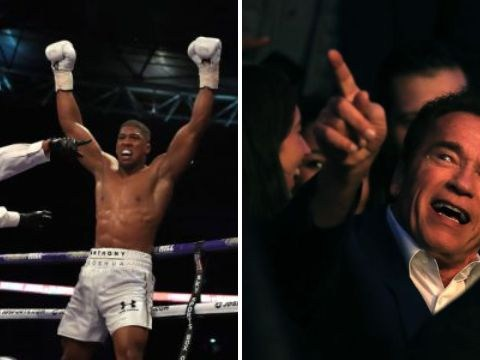 Arnold Schwarzeneger and Hayden Panettiere lead support ringside for Anthony Joshua's fight against Wladimir Klitschko