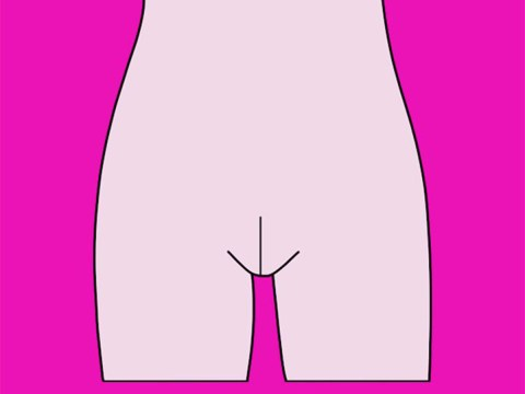 A former bikini waxer says there are five different types of vaginas