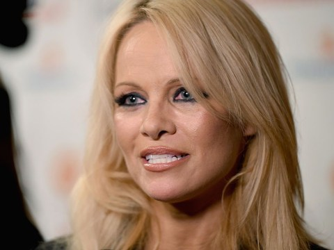 Pamela Anderson responds to rumours she's dating Julian Assange