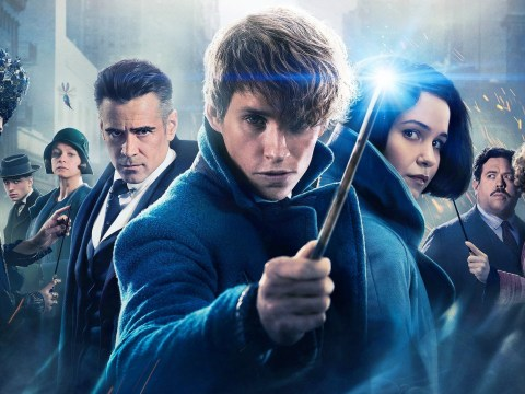 JK Rowling's Fantastic Beasts are casting for budding teenage actors – so you might want to read this