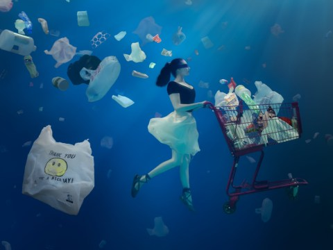 Dancer and film maker creates visually stunning campaigns to save the oceans