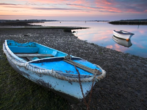 8 reasons to visit Poole – including Brownsea Island and Corfe Castle