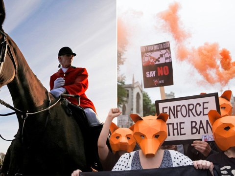Parliament to get free vote on fox hunting