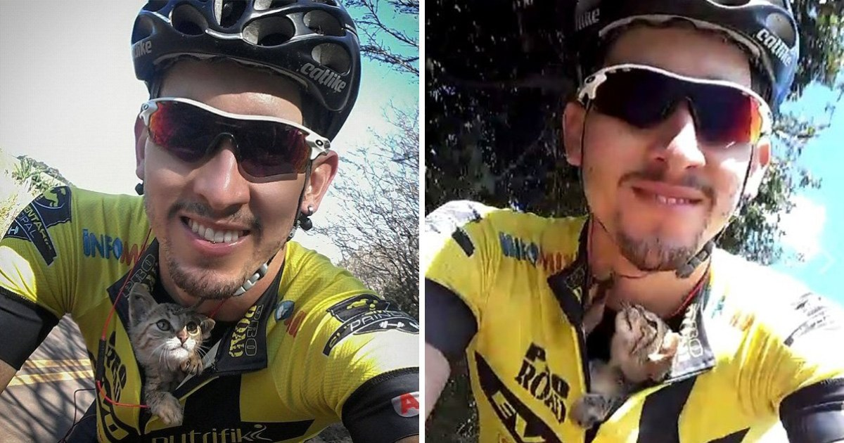 Cyclist saves a lost kitten by tucking him in his shirt and he can t stop  licking him 7f6ca64f7