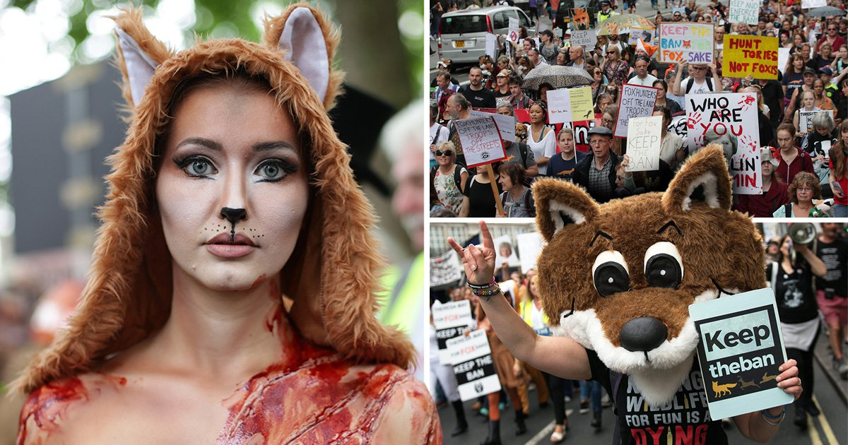 Anti-fox hunting campaigners march telling Theresa May to keep the ban
